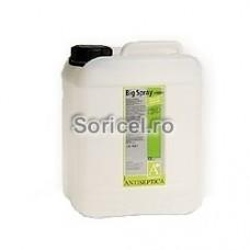 Dezinfectant lichid Big Spray